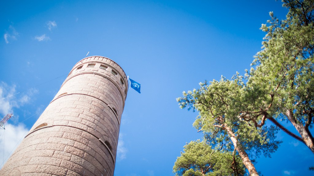 Смотровая башня Pyynikki. Фото: Visit Tampere / Laura Vanzo