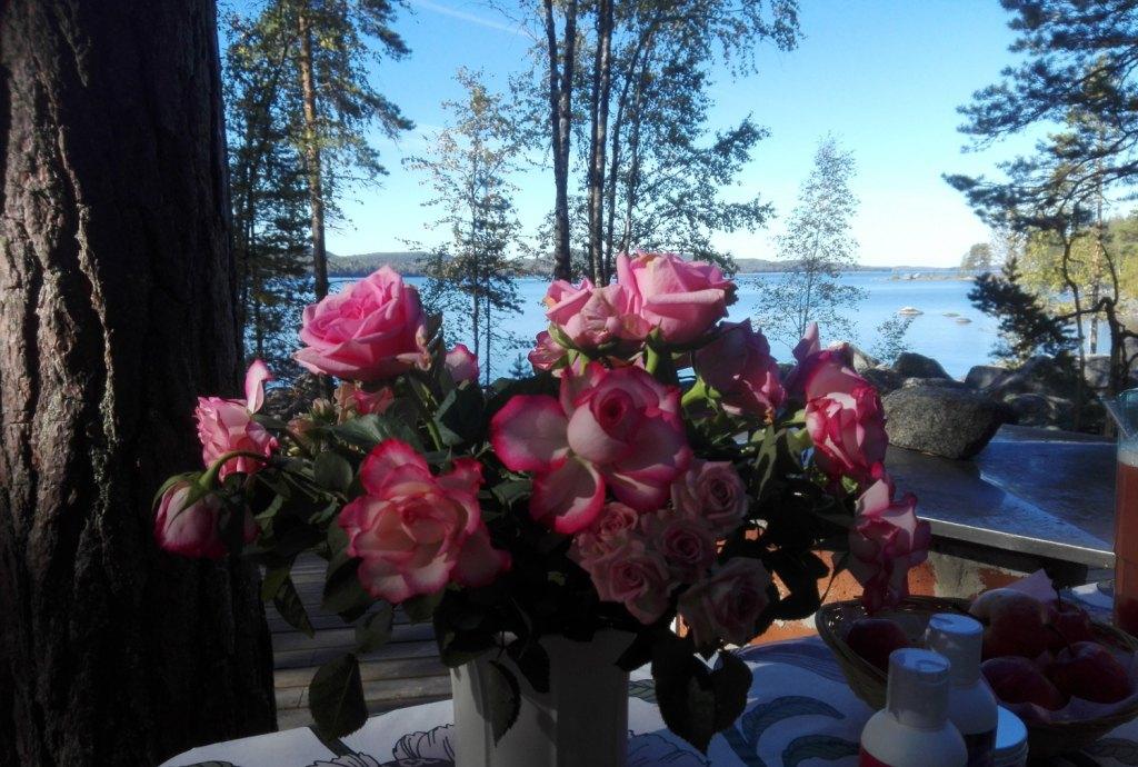 Фото: nukula.fi